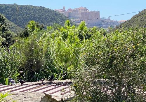 vue citadelle